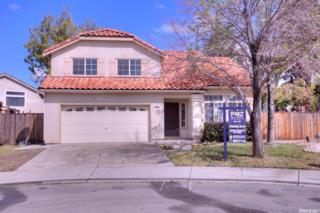 733 Glenpine Court, Tracy, CA 95377 (MLS #17015545) :: The Del Real Group