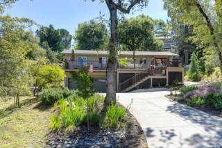 12600 Torrey Pines Drive, Auburn, CA 95602 (MLS #17028853) :: Hybrid Brokers Realty