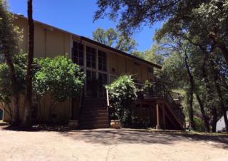 14216 Torrey Pines Drive, Auburn, CA 95602 (MLS #17030008) :: Hybrid Brokers Realty