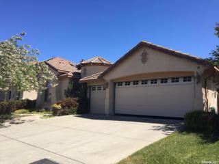 18213 Mallard Street, Woodland, CA 95695 (MLS #17030220) :: Hybrid Brokers Realty