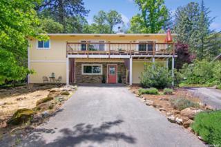 12818 Roadrunner Drive, Penn Valley, CA 95946 (MLS #17030479) :: Hybrid Brokers Realty
