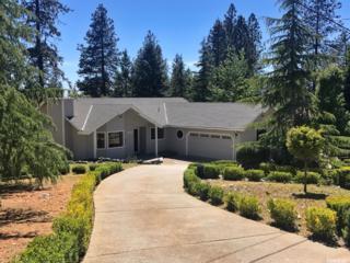 11159 Hackett Court, Grass Valley, CA 95949 (MLS #17030515) :: Hybrid Brokers Realty