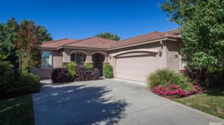 1901 Fall River Drive, Marysville, CA 95901 (MLS #17030589) :: Hybrid Brokers Realty