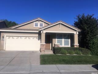 10141 Lofton Way, Elk Grove, CA 95757 (MLS #17030647) :: Hybrid Brokers Realty