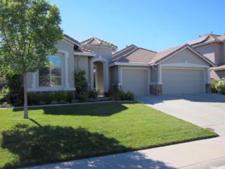 18022 Mallard Street, Woodland, CA 95695 (MLS #17030654) :: Hybrid Brokers Realty