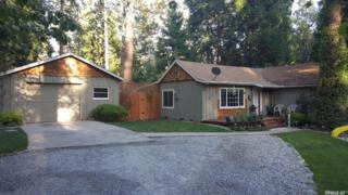 5804 Ritz Road, Pollock Pines, CA 95726 (MLS #17030710) :: Hybrid Brokers Realty
