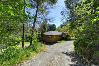 2027 Streambed Lane, Placerville, CA 95667 (MLS #17030851) :: Hybrid Brokers Realty
