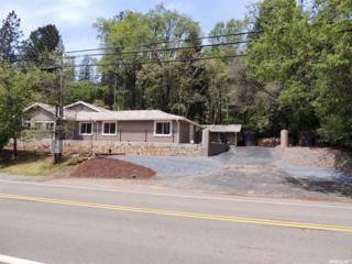 15675 Lake Arthur Road, Auburn, CA 95602 (MLS #17030881) :: Hybrid Brokers Realty