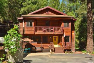 14031 Fifield Road, Grass Valley, CA 95945 (MLS #17030913) :: Hybrid Brokers Realty