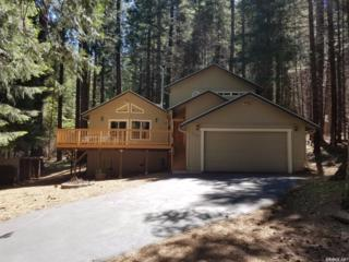 5144 Parkside Drive, Grizzly Flats, CA 95636 (MLS #17030917) :: Hybrid Brokers Realty