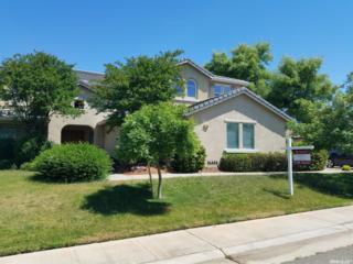 7746 Tigerwoods Drive, Sacramento, CA 95829 (MLS #17030970) :: Hybrid Brokers Realty