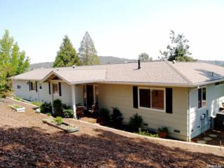 3287 Kimberly Road, Cameron Park, CA 95682 (MLS #17030971) :: Hybrid Brokers Realty