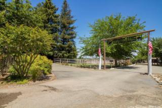 7601 State Highway 70 Highway, Marysville, CA 95901 (MLS #17030159) :: Hybrid Brokers Realty