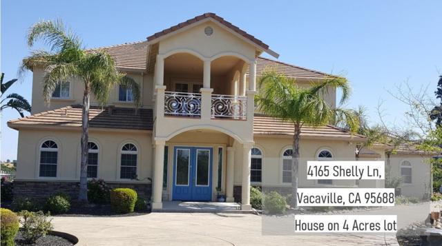 4165 Shelly Lane, Vacaville, CA 95688 (MLS #19038922) :: Heidi Phong Real Estate Team