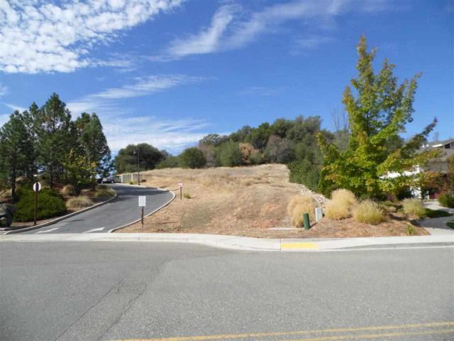 305 Scottsville Boulevard, Jackson, CA 95642 (MLS #13601113) :: Keller Williams - Rachel Adams Group