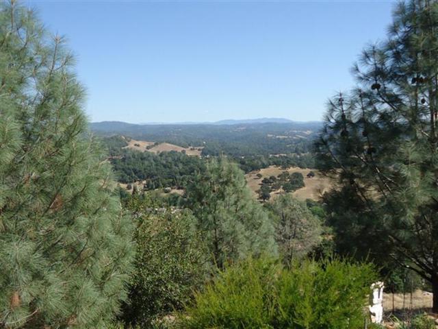 10524 Ridgecrest Drive, Jackson, CA 95642 (MLS #14075401) :: Heidi Phong Real Estate Team