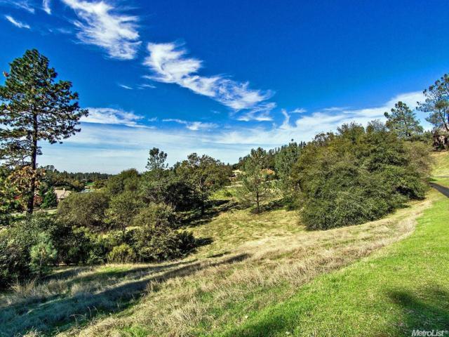 2705 Winding Creek Lane, Meadow Vista, CA 95722 (MLS #16069841) :: NewVision Realty Group