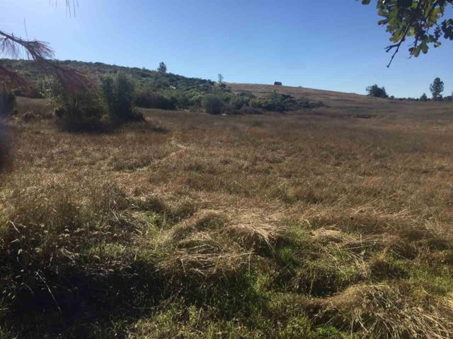 0 American Flat Side Road, Fiddletown, CA 95629 (MLS #16601291) :: REMAX Executive