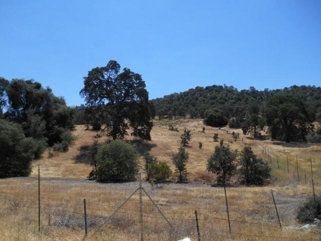 14500 Shenandoah Road, Plymouth, CA 95669 (MLS #16601534) :: Team Ostrode Properties