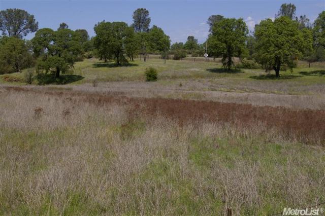 2201 Deer Valley Road, Rescue, CA 95672 (MLS #17022774) :: Heidi Phong Real Estate Team