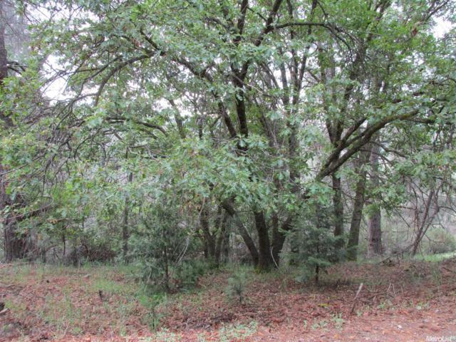 5315 Five Spot Road, Pollock Pines, CA 95726 (MLS #17026965) :: Keller Williams - Rachel Adams Group