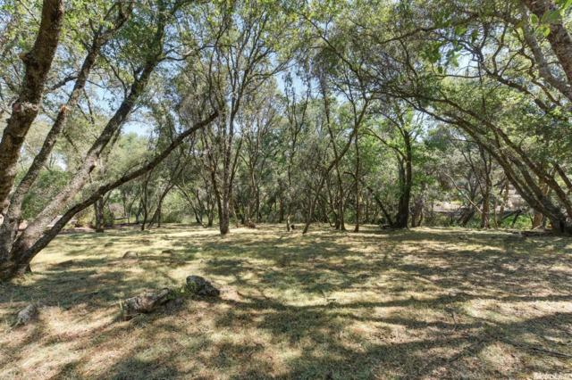 6181 Aldea Drive, El Dorado Hills, CA 95762 (MLS #17028578) :: The Merlino Home Team