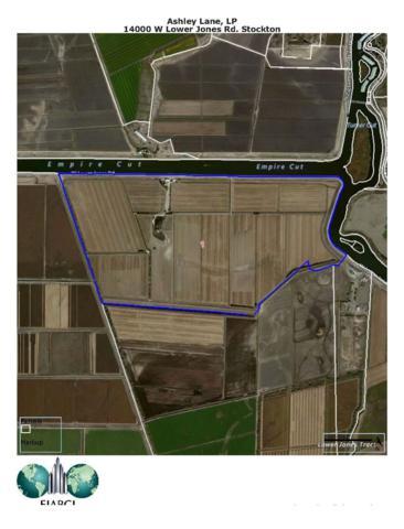 14000 W Lower Jones Road, Stockton, CA 95219 (MLS #17033001) :: Heidi Phong Real Estate Team