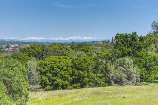 0-Lot 74 Greenview Drive, El Dorado Hills, CA 95762 (MLS #17036301) :: Keller Williams Realty