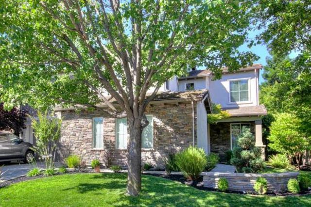 1480 Falcon Pointe Lane, Roseville, CA 95661 (MLS #17038103) :: Brandon Real Estate Group, Inc