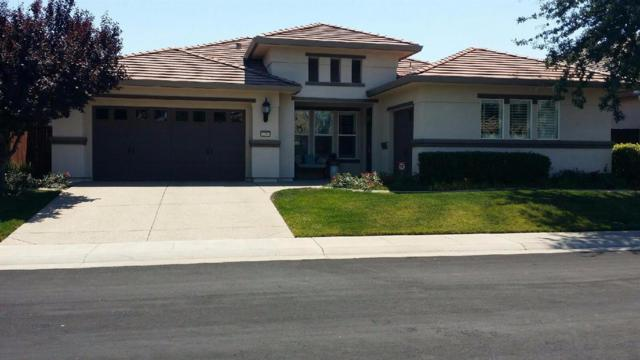 2074 Cadaleigh Lane, Roseville, CA 95747 (MLS #17038938) :: Brandon Real Estate Group, Inc