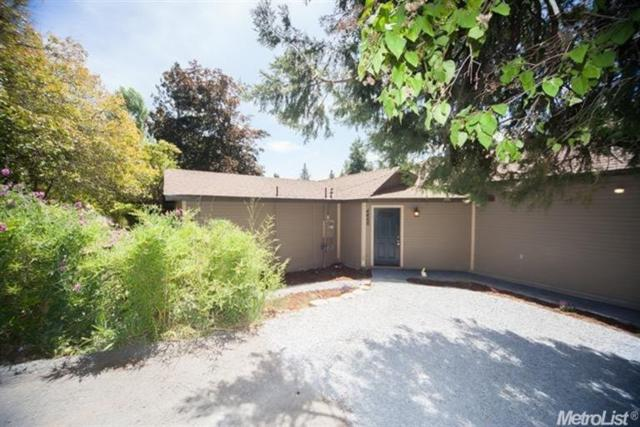 4466 Eight Mile Road, Camino, CA 95709 (MLS #17039435) :: Hybrid Brokers Realty
