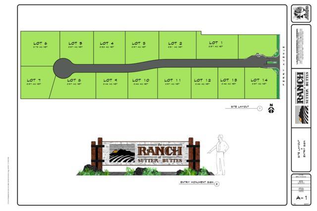 0-11 Javil Court, Sutter, CA 95982 (MLS #17040550) :: Team Ostrode Properties