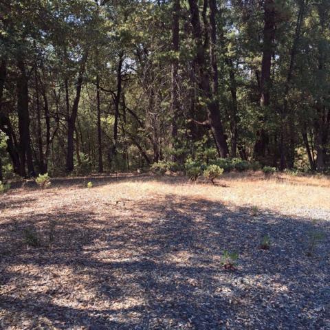 0 Cottonwood Lane, Pine Grove, CA 95665 (MLS #17048478) :: Team Ostrode Properties
