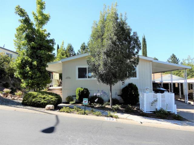 20 Rollingwood Drive #103, Jackson, CA 95642 (MLS #17048516) :: Dominic Brandon and Team