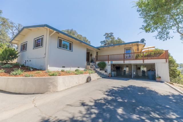 1390 Kellogg Street, Newcastle, CA 95658 (MLS #17050246) :: Brandon Real Estate Group, Inc