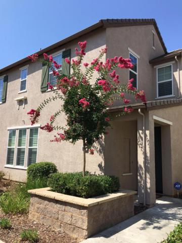 6115 Passiflora Lane, Orangevale, CA 95662 (MLS #17051641) :: Keller Williams Realty