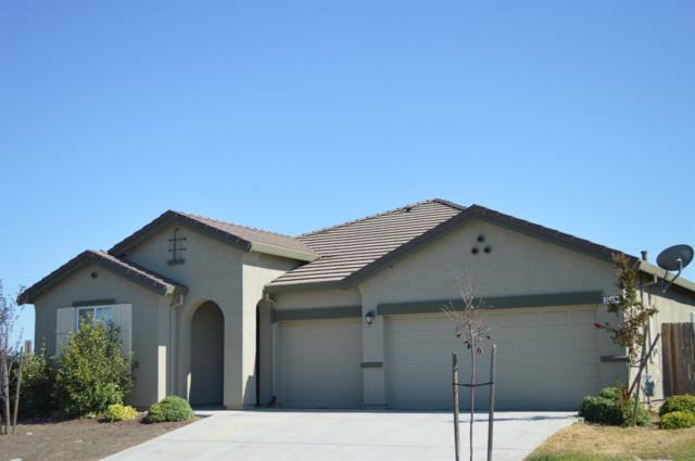 2436 Westhill Drive, Marysville, CA 95901 (MLS #17051675) :: REMAX Executive