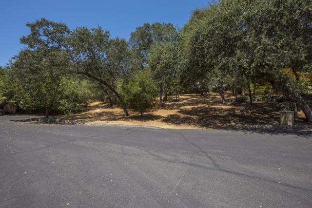8739 Noland Lane, Fair Oaks, CA 95628 (MLS #17052041) :: Heidi Phong Real Estate Team