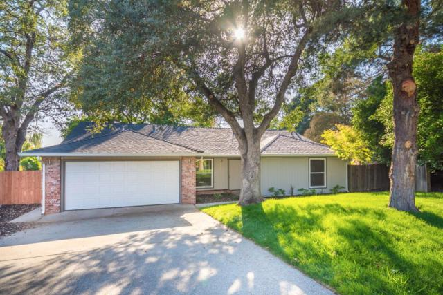5850 Elmwood Court, Rocklin, CA 95677 (MLS #17052729) :: Brandon Real Estate Group, Inc