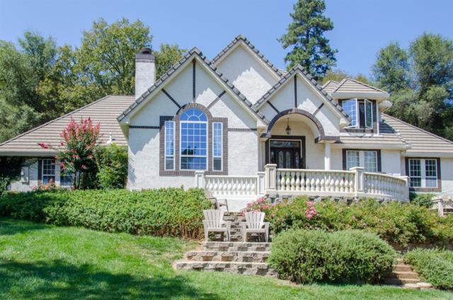 1250 Squirrel Creek Place, Auburn, CA 95603 (MLS #17053185) :: Brandon Real Estate Group, Inc