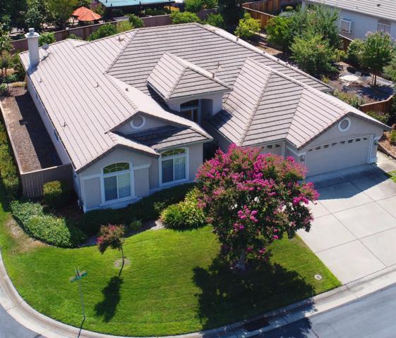 301 Melville Court, Roseville, CA 95747 (MLS #17053231) :: Brandon Real Estate Group, Inc