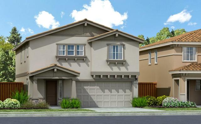 7176 Corvus Circle, Roseville, CA 95747 (MLS #17053659) :: Brandon Real Estate Group, Inc