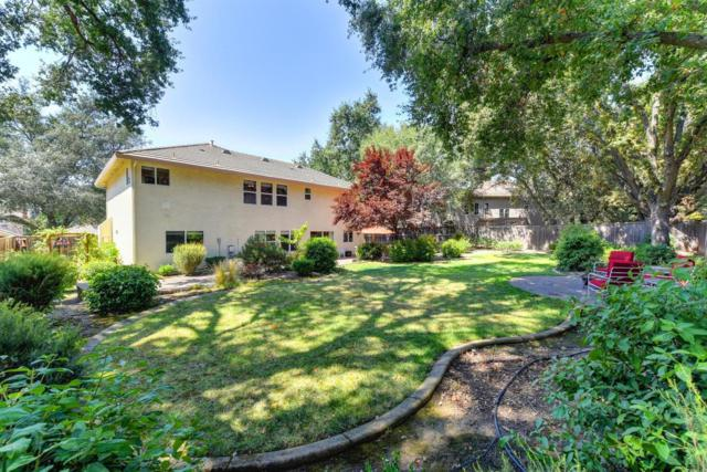 8545 Oak Arbor Court, Fair Oaks, CA 95628 (MLS #17054319) :: The Del Real Group