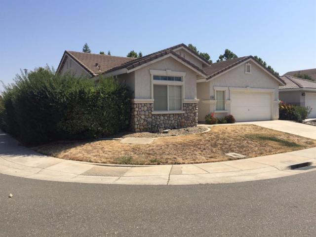 9560 Clear Springs Circle, Elk Grove, CA 95624 (MLS #17054644) :: The Del Real Group