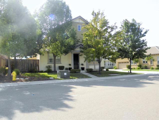 20823 Grapevine Drive, Patterson, CA 95363 (MLS #17059814) :: The Del Real Group