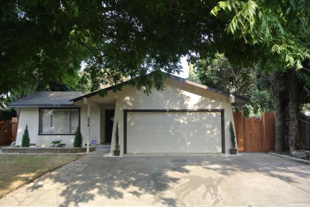 534 Wanzia Lane, Patterson, CA 95363 (MLS #17059960) :: The Del Real Group
