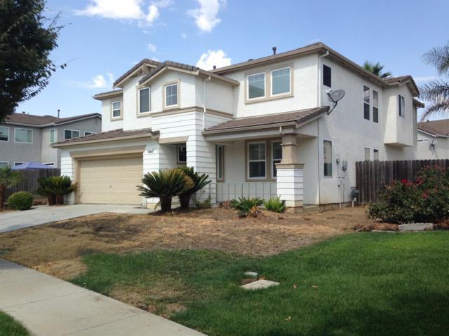 1361 Samantha Creek Drive, Patterson, CA 95363 (MLS #17059991) :: The Del Real Group