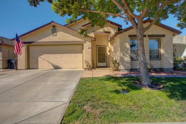 435 Thrush Drive, Patterson, CA 95363 (MLS #17060290) :: The Del Real Group