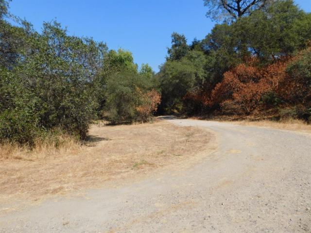 6750 Brooks Lane, Loomis, CA 95650 (MLS #17060300) :: Keller Williams - Rachel Adams Group