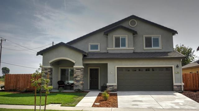 1795 Silver Ridge Way, Oakdale, CA 95361 (MLS #17060629) :: The Del Real Group